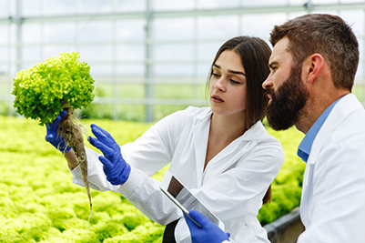 Professional Certificate in Identifying Basic Food Safety Hazards and Contamination Sources
